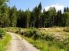 Cestou do Bartošovej Lehôtky