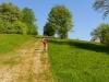 Cestou na Selčiansky Diel