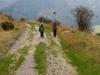 Cesta do Vrícka