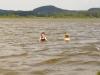 Kemp na brehu Komárovského rybníka