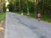 Na ceste za dedinou Srbsko