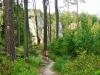 Cesta z Mladějova