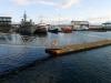 Starý prístav, Reykjavík