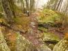 Cesta na Hrb od Chaty pod Hrbom