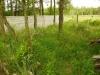 Kosenie trávy