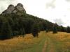 Cesta lesom v smere na Vrchpodžiar a Vrchpodžiar