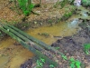 Mostík cez potok