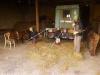 V stodole