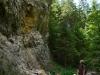 Dolina Borovianky