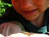 Kamarátka húsenica