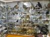 Petrine múzeum minerálov