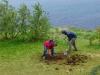 Práce na kvetinovej záhradke