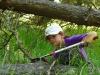 Spracovanie dreva