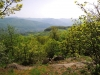 Výhľad zo Sedlovej skaly