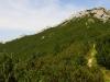 Sivý vrch zo sedla