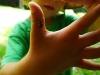 Zo života hmyzu: lienka