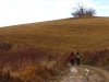Cestou na Zlatý vrch od Červenej studne